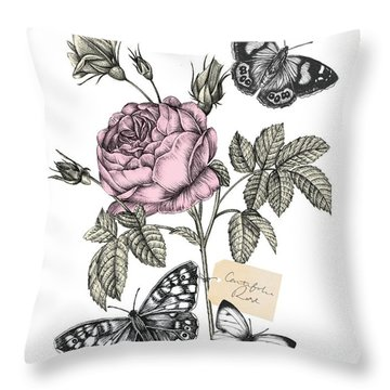 Cabbage Rose Throw Pillow by Stephanie Davies