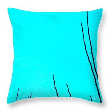 California Like Danmark Throw Pillow by CML Brown