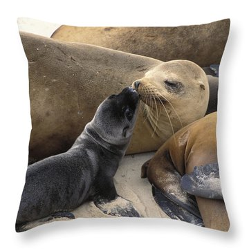 California Sea Lion And Newborn Pup San Throw Pillow by Suzi Eszterhas