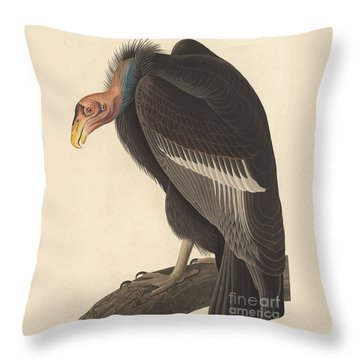 Californian Vulture Throw Pillow by John James Audubon