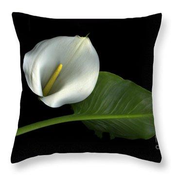 Calla Lily Throw Pillow by Christian Slanec