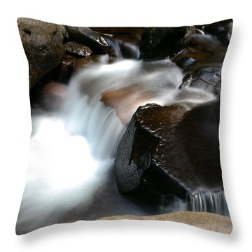 Calming Water Throw Pillow by Jeff Swan