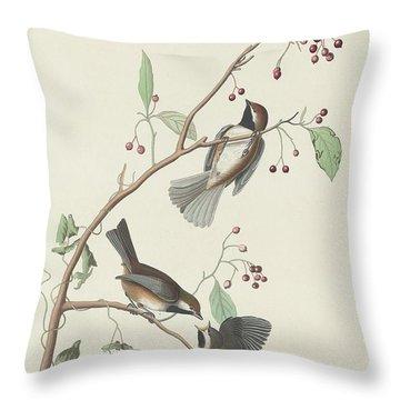 Canadian Titmouse Throw Pillow by John James Audubon