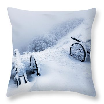 Canons Throw Pillow by Evgeni Dinev