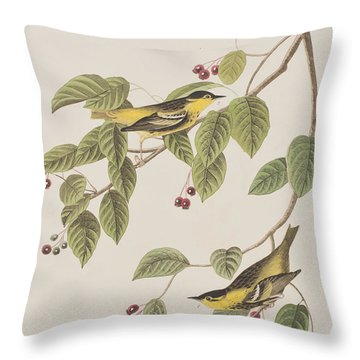 Carbonated Warbler Throw Pillow by John James Audubon