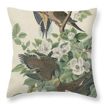 Carolina Pigeon Or Turtle Dove Throw Pillow by John James Audubon