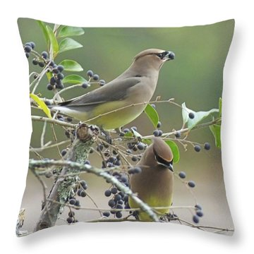 Cedar Wax Wings Throw Pillow by Lizi Beard-Ward