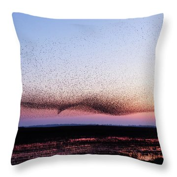 Chaos In Motion - Bird Of Many Birds Throw Pillow by Roeselien Raimond