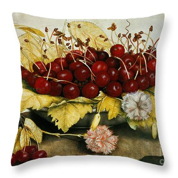 Cherries And Carnations Throw Pillow by Giovanna Garzoni