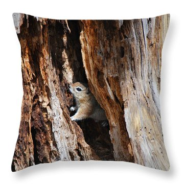 Chipmunk - Eager Arizona Throw Pillow by Donna Greene