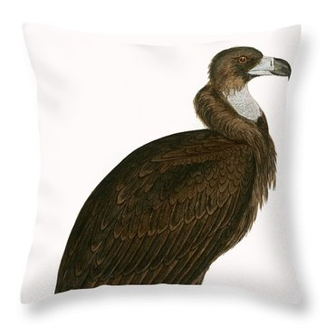 Cinereous Vulture Throw Pillow by English School