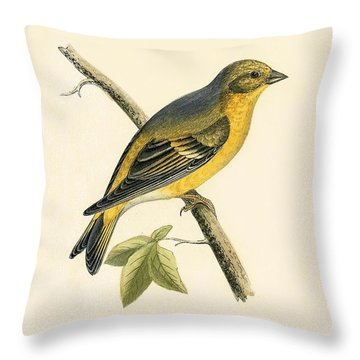 Citril Finch Throw Pillow by English School