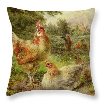 Cochin China Fowls Throw Pillow by George Hickin
