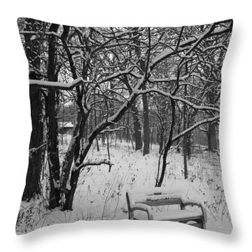 Cold Seat Throw Pillow by Lauri Novak