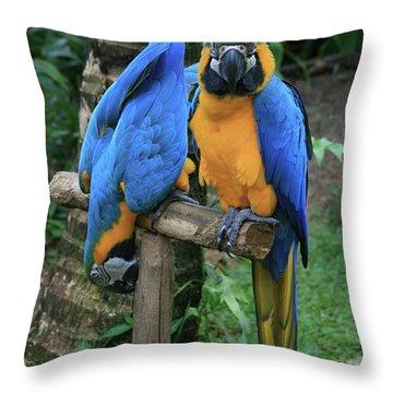 Colourful Macaw Pohakumoa Maui Hawaii Throw Pillow by Sharon Mau