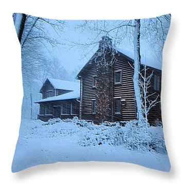 Comfort From The Cold Throw Pillow by Kristin Elmquist