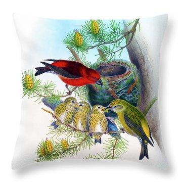 Common Crossbill Antique Bird Print John Gould Hc Richter Birds Of Great Britain  Throw Pillow by John Gould - HC Richter