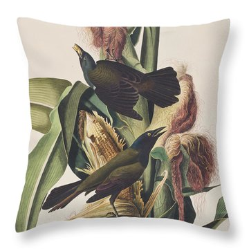 Common Crow Throw Pillow by John James Audubon