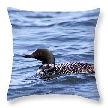 Common Loon Throw Pillow by Teresa Zieba
