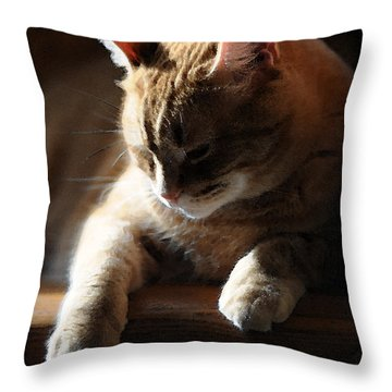 Contentment Throw Pillow by Renee Forth-Fukumoto