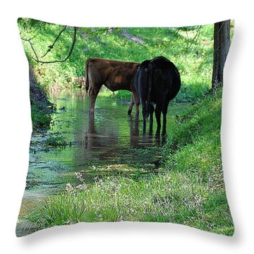 Cooling Spring Throw Pillow by Jan Amiss Photography