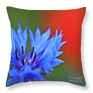 Cornflower Throw Pillow by Heiko Koehrer-Wagner