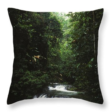 Costa Rica Waterfall In The Carocavado Throw Pillow by James Forte