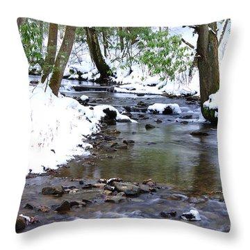 Craig Run Throw Pillow by Thomas R Fletcher