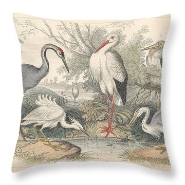 Cranes Throw Pillow by Oliver Goldsmith