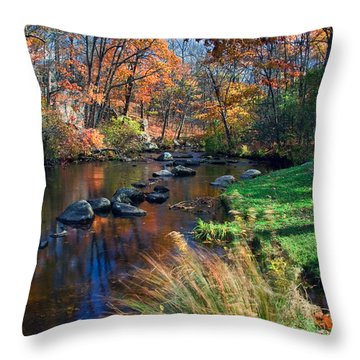 Cross River Throw Pillow by June Marie Sobrito