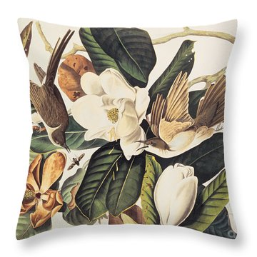 Cuckoo On Magnolia Grandiflora Throw Pillow by John James Audubon