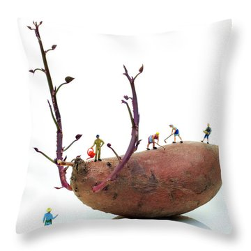Cultivation On A Sweet Potato Throw Pillow by Paul Ge