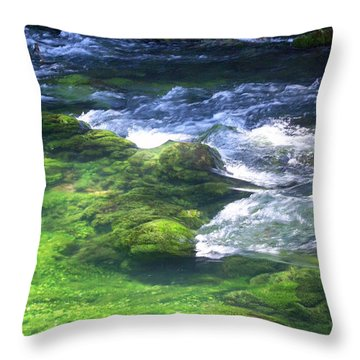 Current River 8 Throw Pillow by Marty Koch