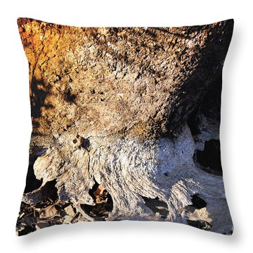 Curves And Colors In Nature Throw Pillow by Todd A Blanchard