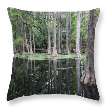 Cypress Swamp Throw Pillow by Carol Groenen