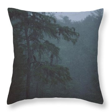 Cypress Swamp Throw Pillow by Kimberly Mohlenhoff