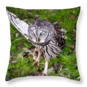 Dancing Owl Throw Pillow by David Lee Thompson