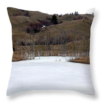 Deadwood Inlet Throw Pillow by Will Borden