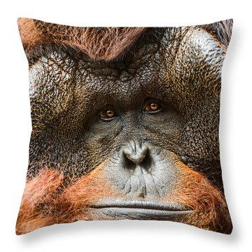Deep In Thought Throw Pillow by Jamie Pham