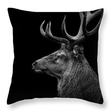 Deer In Black And White Throw Pillow by Lukas Holas