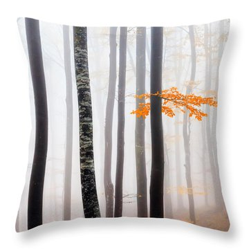 Delicate Forest Throw Pillow by Evgeni Dinev