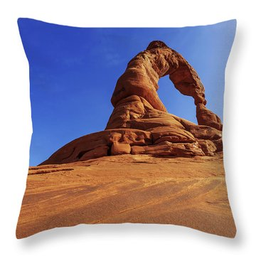Delicate Perspective Throw Pillow by Chad Dutson