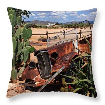 Desert Classic Throw Pillow by Aidan Moran