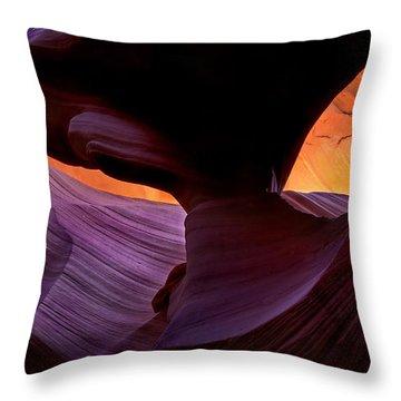 Desert Eye Throw Pillow by Mike  Dawson