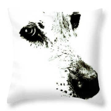 Throw Pillow featuring the painting Dog Face by Frank Tschakert