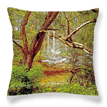 Throw Pillow featuring the photograph Dogwood Tree In Spring by A Gurmankin