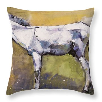 Donkey Stallion, Ronda Throw Pillow by Mark Adlington