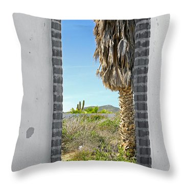 Doorway To The Desert Throw Pillow by Cheryl Young