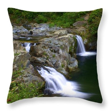 Double Falls Throw Pillow by Marty Koch