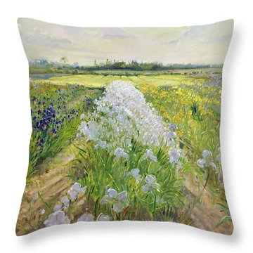 Down The Line Throw Pillow by Timothy Easton